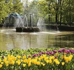 Петергоф (Малый Музей и фонтаны Нижнего парка) Изображение 0