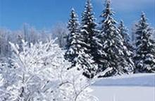 Изображение для Тур «А в новый год в Карелии, как в сказке!»3 дня/2 ночи № 2